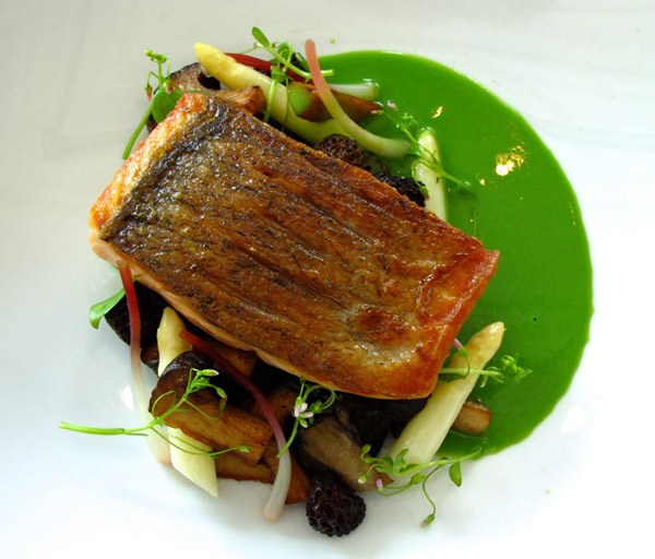 Pics Photos - Pan Roasted Salmon With Chanterelle Mushrooms