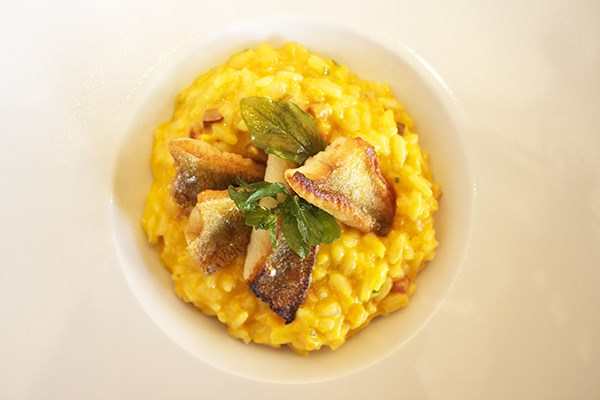 Yellow Perch with Butternut Squash Risotto