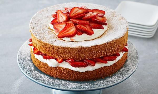 Anna Olson Chocolate Sponge Cake Recipe