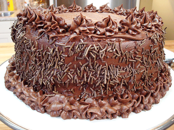 Double Vanilla Cake with Dark Chocolate Frosting