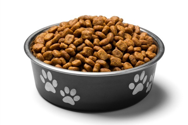 Cheapest Dog Food Sites