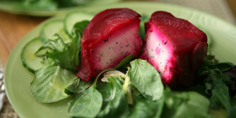 Beet and Goat Cheese Terrine