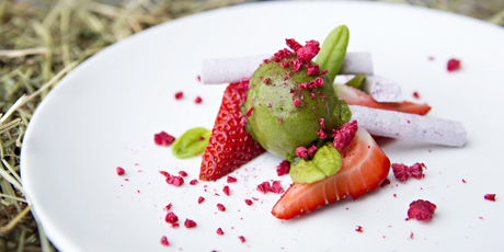 Sorrel Sorbet With Rhubarb Strawberries Elderflower And