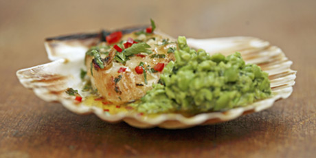 Scallops and Minty Peas