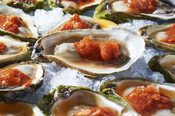 Oysters with Spicy Tomato Ice