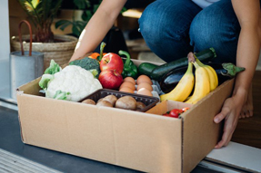 Ranking Canadian Retailers Offering Grocery Delivery Right Now, by Price